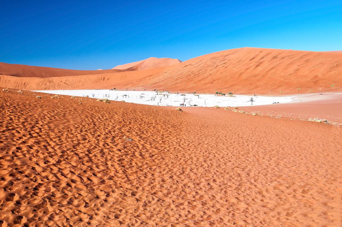 View of Deadvlei in early morning sossusvlei namibia desert