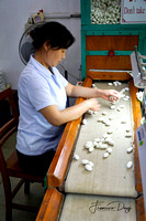 Cocoon selection in the Suzhou No.1 Silk Mill