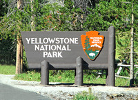 Yellowstone National Park' sign in East Entrance
