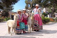 Mother and daughters in traditional clothing with alpacas in Chivay