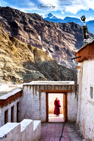 Welcome to Rizong Gompa Monk Ladakh