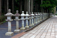 Entrance to Okunoin cemetery forest japan koyasan